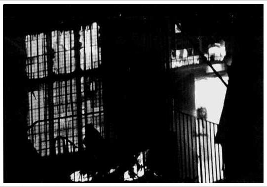 PHOTO CREDIT: Paranormal 360